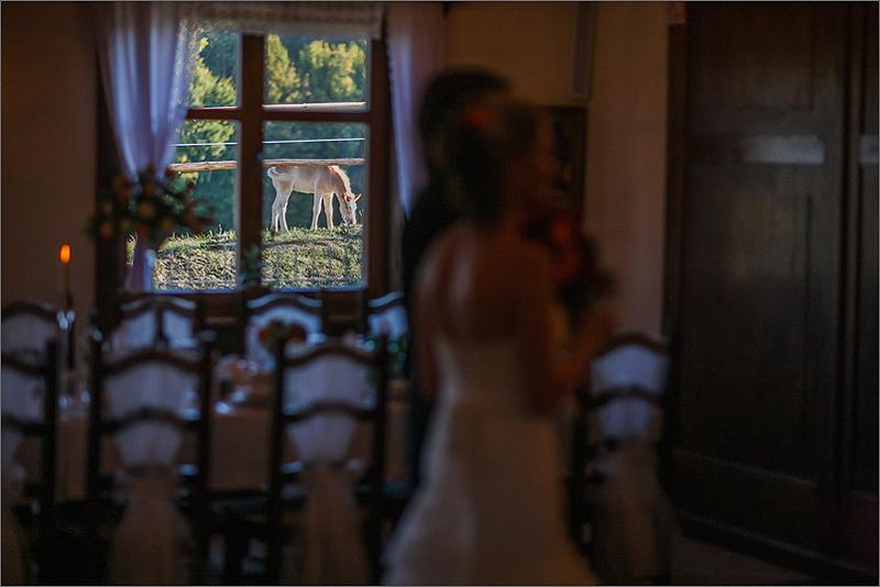 Fotografia ślubna i weselna przygotowania zabawa