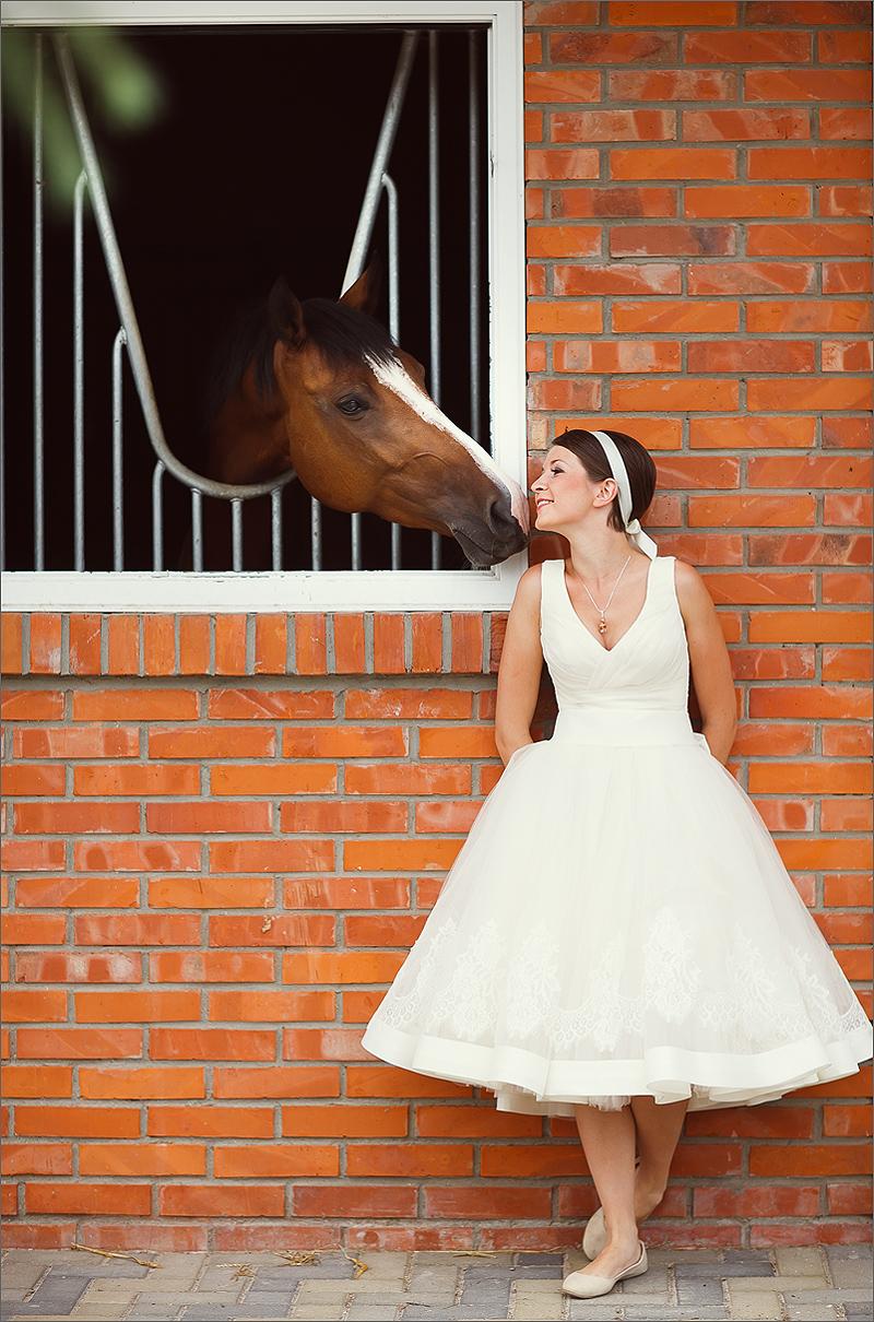 Zdjęcia ślubne Rzeszów koń